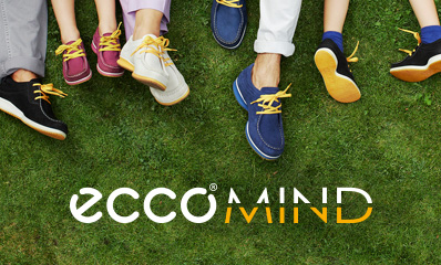 Introducing ECCO MIND